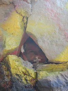 Gus at Runyon Canyon