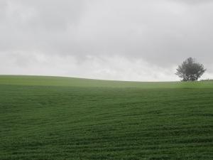 More hills, more rain.